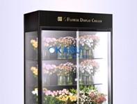 Tủ trưng bày và bảo quản hoa tươi OKASU OKS-SG09YG