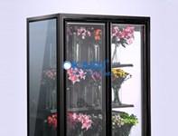 Tủ trưng bày và bảo quan hoa tươi OKASU OKS-SG18FE