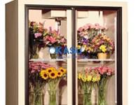 Tủ trưng bày và bảo quản hoa tươi