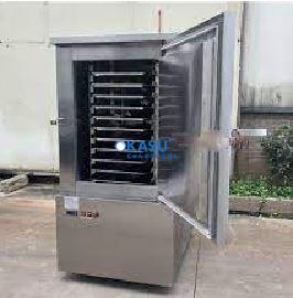Tủ cấp đông nhanh âm 45 độ 300L
