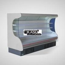 Tủ rèm mát trưng bày siêu thị OKASU OKS-12FU