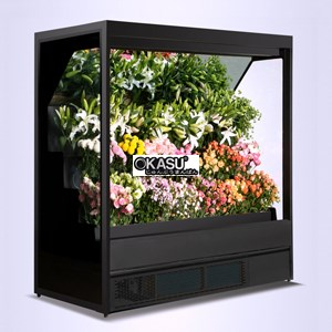 Tủ trưng bày và bảo quan hoa quả siêu thị OKASU OKS-SG18YH - ảnh 1