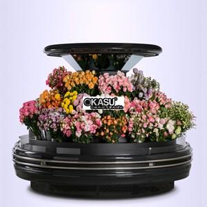Tủ bảo quản và trưng bày Hoa tươi OKASU OKS-SG18YA - ảnh 1